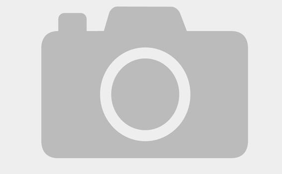 VLC lạy Đức Mẹ